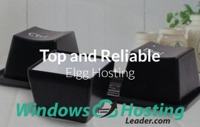 Top and Reliable ELGG Hosting