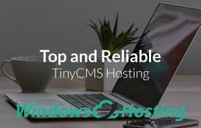 Top and Reliable TinyCMS Hosting
